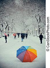 센트럴팍, 겨울