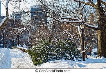 센트럴팍, 겨울 장면