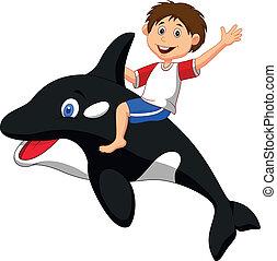 소년, 만화, 구, orca