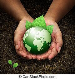 손, 보유, 지구, 녹색, 인간