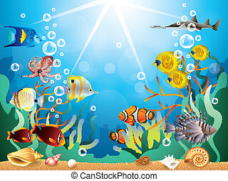 수중 사진, 벡터, 삽화, 세계