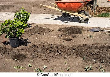 수풀, 설치, 건축 용지, landscaping-