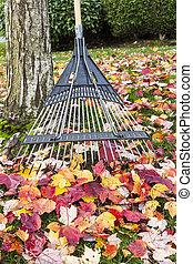 시간, 위로의, 날씬한, 가을