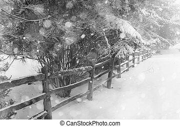 시골, 겨울, 고매하다, 장면