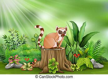 식물, 그루터기, 착석, 여우원숭이, 나무, 녹색, 만화