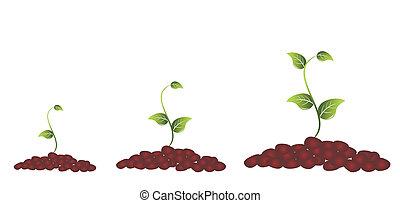 식물, 녹색, 꽃 같은