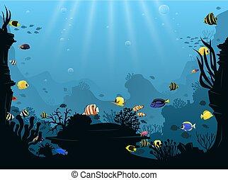 식물, 수중 사진, fish, 열대 근해, 여러 가지이다, 조경술을 써서 녹화하다, 수영