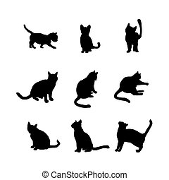 실루엣, 세트, 고양이, 완성하다