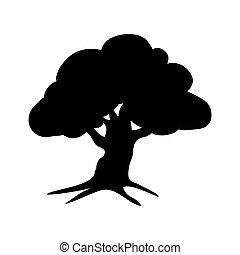 실루엣, 식물상, 오크 나무, 아이콘