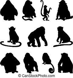 실루엣, 원숭이, 세트