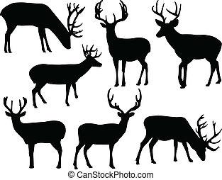 실루엣, deers