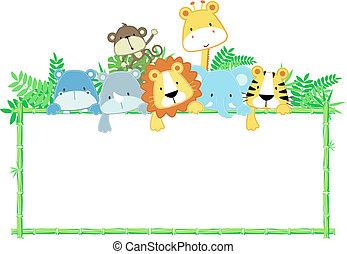 아기, 귀여운, 구조, 동물, 정글