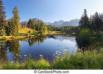 아름다운, 산, 자연, pleso, -, 장면, 호수, 슬로바키아 공화국, tatra, strbske