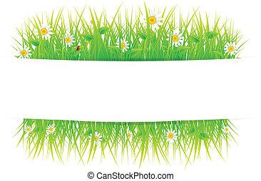 아름다운, 여름, 목초지
