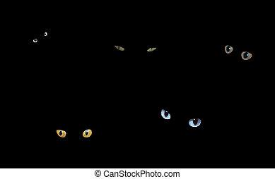 암흑, 고양이