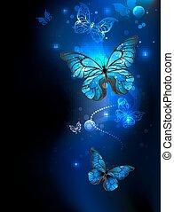 암흑, 나비, 파랑