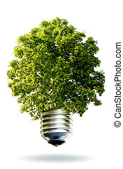 에너지, 개념, 갱신할 수 있는