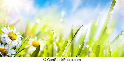 여름, 꽃, 예술, 봄, 하늘, 신선한, 태양, background;, 풀