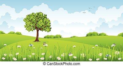 여름, 나비, 꽃, 조경술을 써서 녹화하다