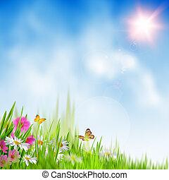 여름, time., 배경, 떼어내다, 환경
