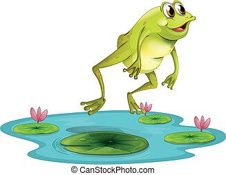 연못, 뛰는 것, 개구리