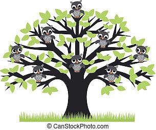 올빼미, 나무