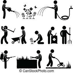 원예, 일, 노동자, 정원사