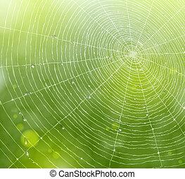 웹, 제자리표, 배경
