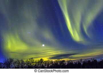위의, 은 점화한다, (aurora, borealis), snowscape., 북부 사투리