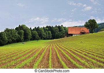 은 수비를 맡는다, 농업