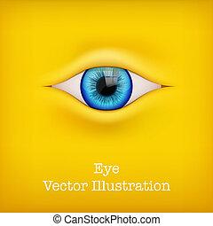 인간, 벡터, illustration., 배경, eye.