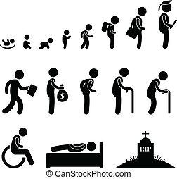 인생, 늙은, 인간, 학생, 아이, 아기