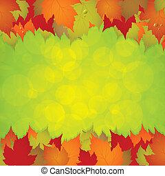 잎, 구조, 가을