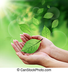 잎, 너의, 세계, 걱정, 손