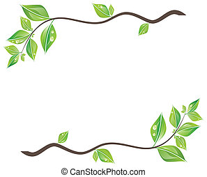 잎, 녹색, 가지