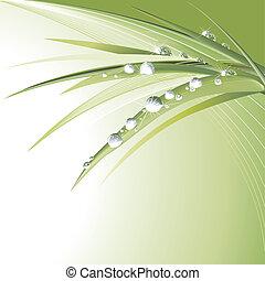 잎, 녹색, waterdrops