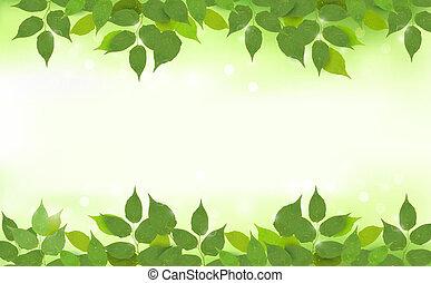 잎, 배경, 자연, 녹색