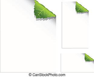 잎, 페이지