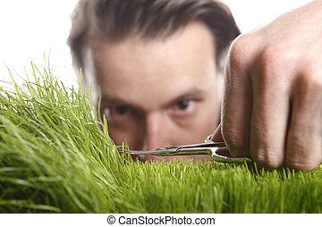 잔디, 공급 절감, 청년, 영어