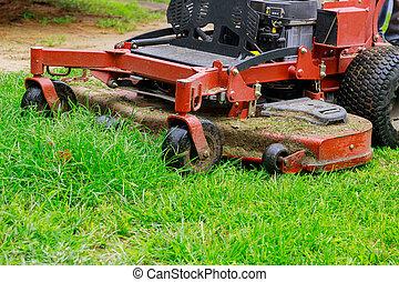 잔디 깎는 사람, 노동자, 남자, 풀, 절단, 잔디, 여름