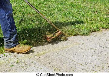 잔디 깎는 사람, 절단, 잔디, 손질하는 사람, 풀, 클로우즈업, 녹색, 초점, 손, 을 사용하여, 남자, 도태의