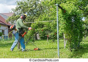 잔디, 남성, 끈, 힘, 손질하는 사람, 도구, 노동자, 잔디 깎는 사람, 풀을 깎는 것