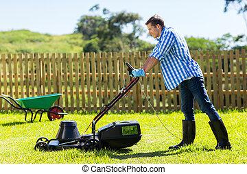 잔디, 남자, 나이 적은 편의, 깎는 것