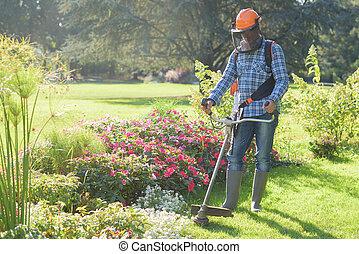 잔디, 노동자, 깎는 것