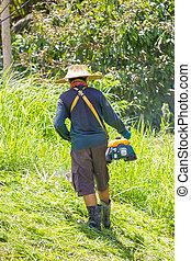 잔디, 노동자, 잔디 깎는 사람, 들판, 절단, 녹색 잔디, 남자