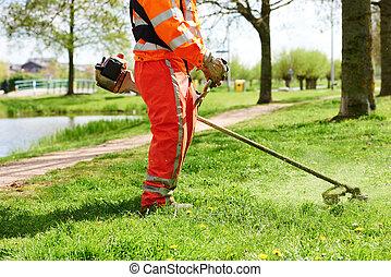 잔디, 노동자, 잔디 깎는 사람, 풀을 깎는 것, 남자