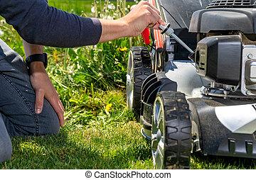 잔디, 수표, 잔디 깎는 사람, 변화, 모터 기름