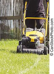 잔디, 정원, 잔디 깎는 사람, 절단, 녹색, 뒤뜰, 풀, service.