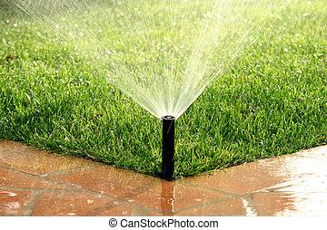 잔디, 정원, 해수욕장의, 관개 시설, 자동이다