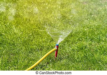 잔디, 정원, 해수욕장의, grass., 활동, 자동이다, 살수차